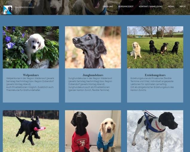 zh-hundeschule website